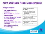 joint strategic needs assessments