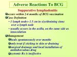 adverse reactions to bcg1