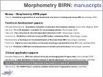 morphometry birn manuscripts2