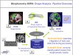 morphometry birn shape analysis pipeline overview