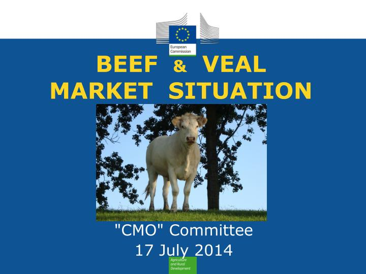 beef veal market situation n.