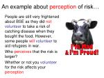 an example about perception of risk