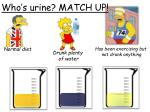 who s urine match up