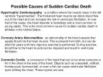 possible causes of sudden cardiac death