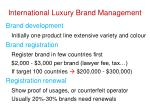 international luxury brand management
