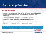 partnership promise5