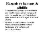 hazards to humans wildlife