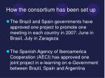 how the consortium has been set up