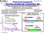 proof of the concept 2 test pdc and sas with cosmic ray bg