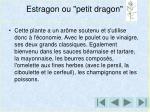 estragon ou petit dragon