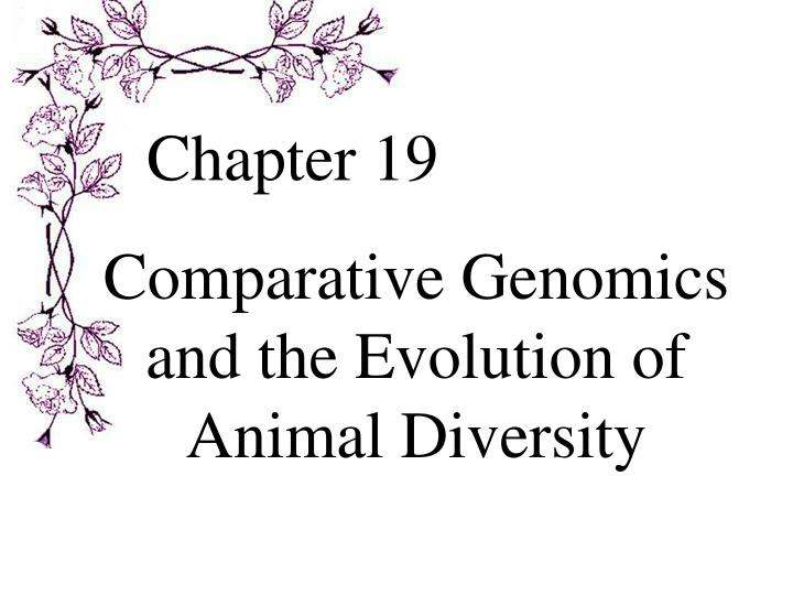 comparative genomics and the evolution of animal diversity n.