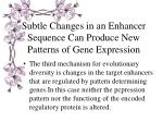 subtle changes in an enhancer sequence can produce new patterns of gene expression