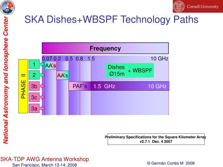 SKA Dishes+WBSPF Technology Paths