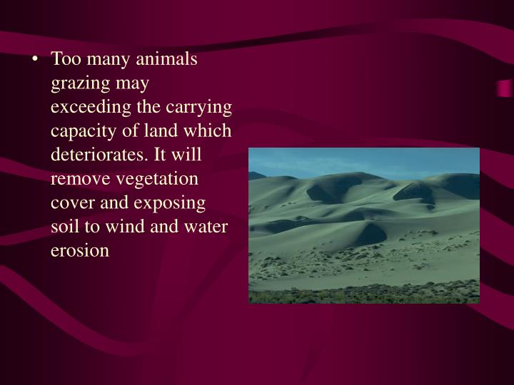 Too many animals grazing may exceeding the carrying capacity of land which deteriorates. It will remove vegetation cover and exposing soil to wind and water erosion