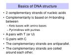 basics of dna structure