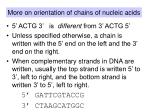 more on orientation of chains of nucleic acids