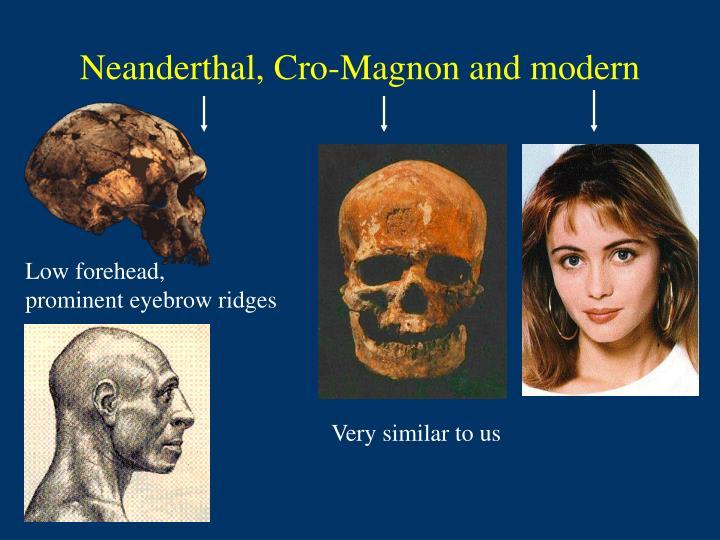Neanderthal, Cro-Magnon and modern