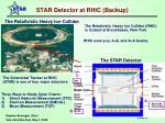 star detector at rhic backup