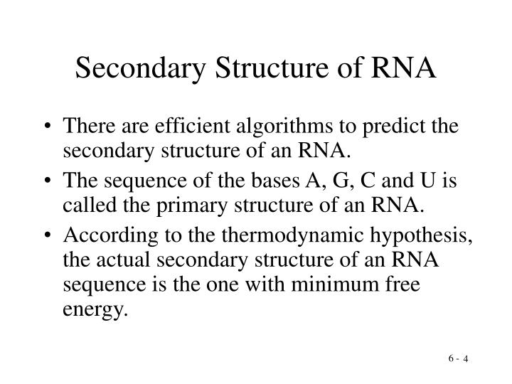 Secondary Structure of RNA