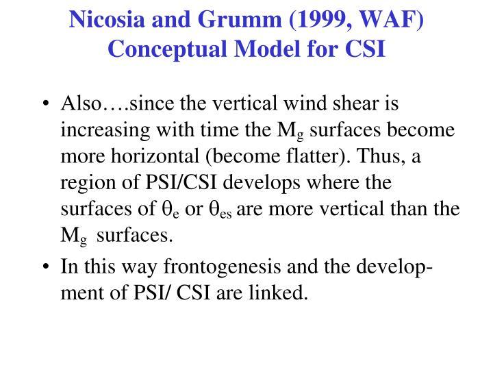 Nicosia and Grumm (1999, WAF) Conceptual Model for CSI