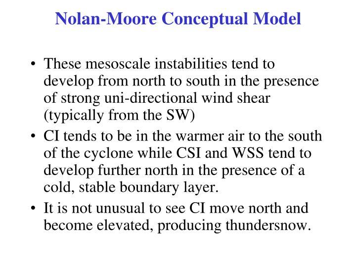 Nolan-Moore Conceptual Model
