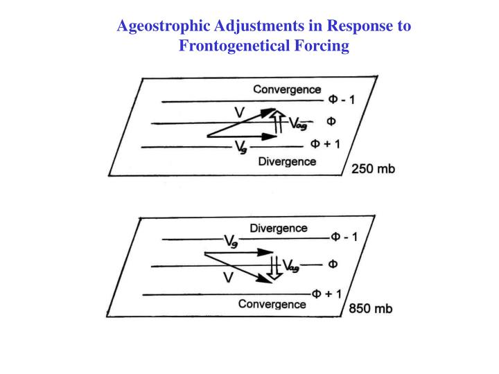 Ageostrophic Adjustments in Response to Frontogenetical Forcing