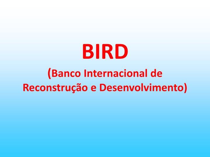 Bird banco internacional de reconstru o e desenvolvimento