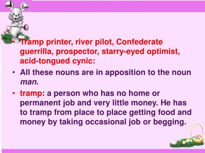 Tramp printer, river pilot, Confederate guerrilla, prospector, starry-eyed optimist, acid-tongued cynic: