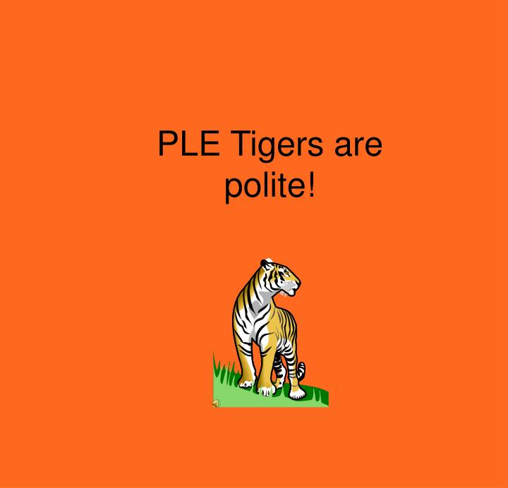 PLE Tigers are polite!