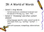 ir a world of words1