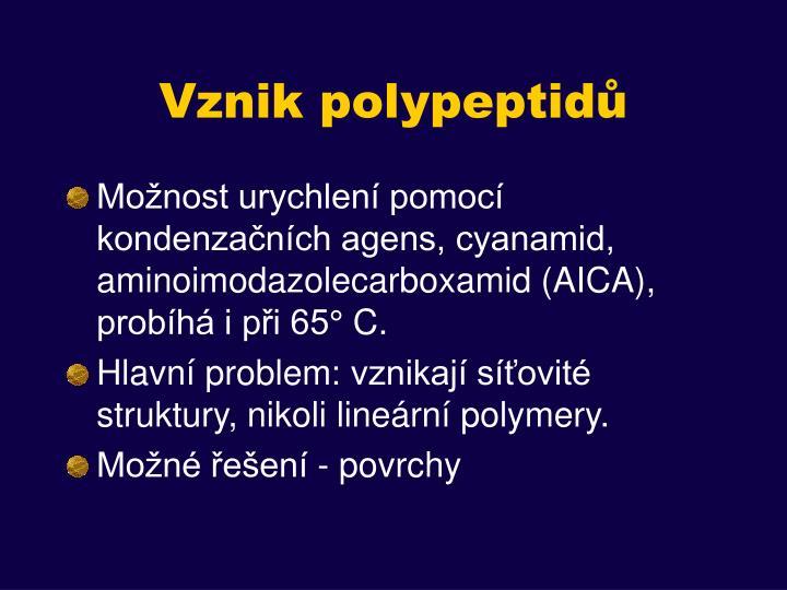 Vznik polypeptidů