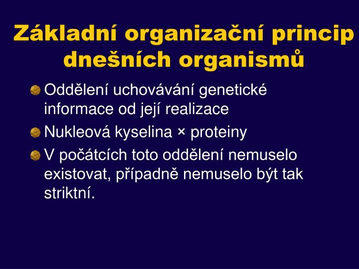 Základní organizační princip dnešních organismů