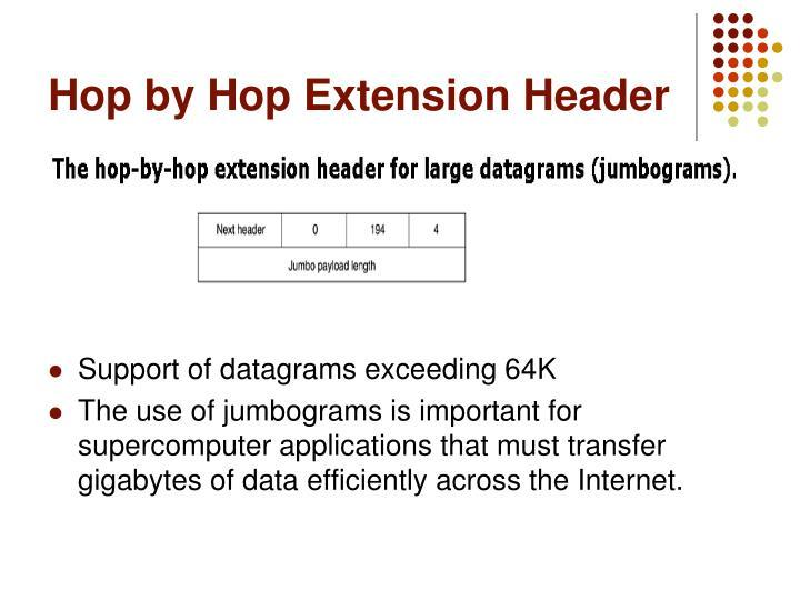 Hop by Hop Extension Header