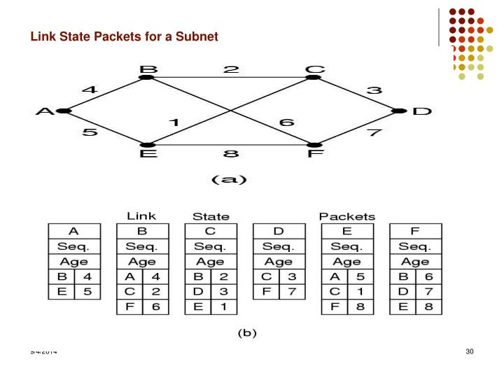 Link State Packets for a Subnet