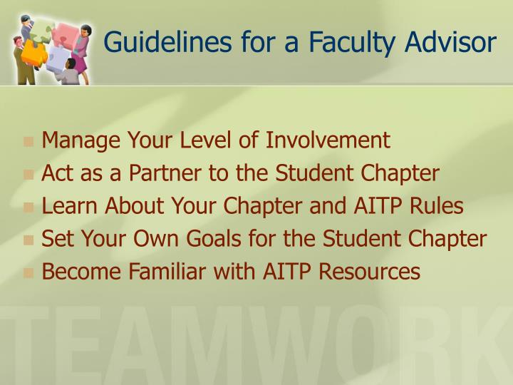 Guidelines for a faculty advisor