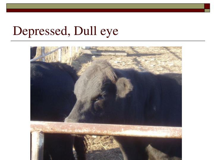 Depressed, Dull eye