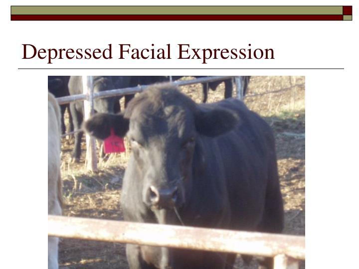 Depressed Facial Expression