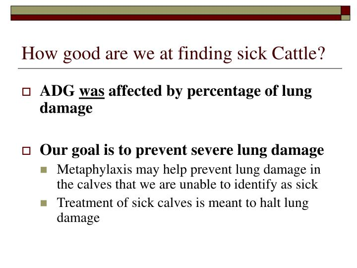 How good are we at finding sick Cattle?