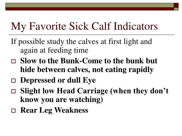 My Favorite Sick Calf Indicators