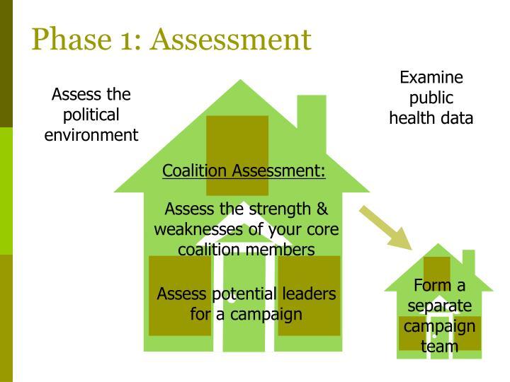 Phase 1: Assessment