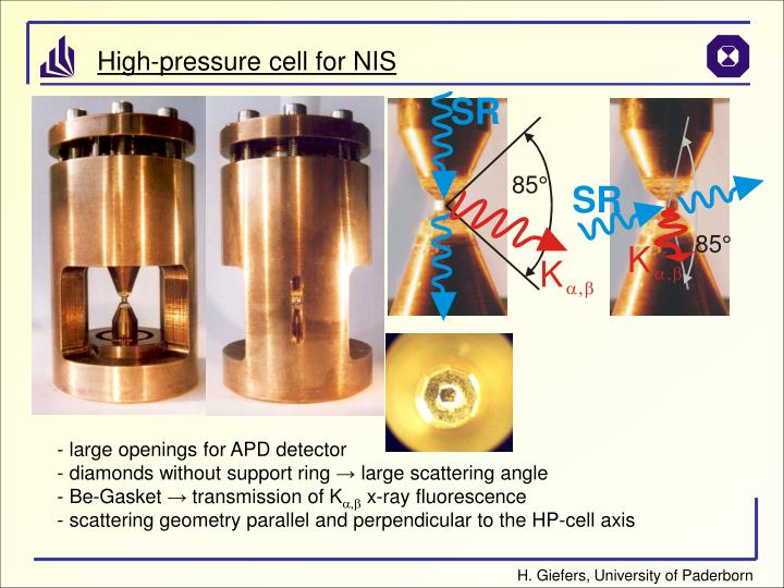 High-pressure cell for NIS