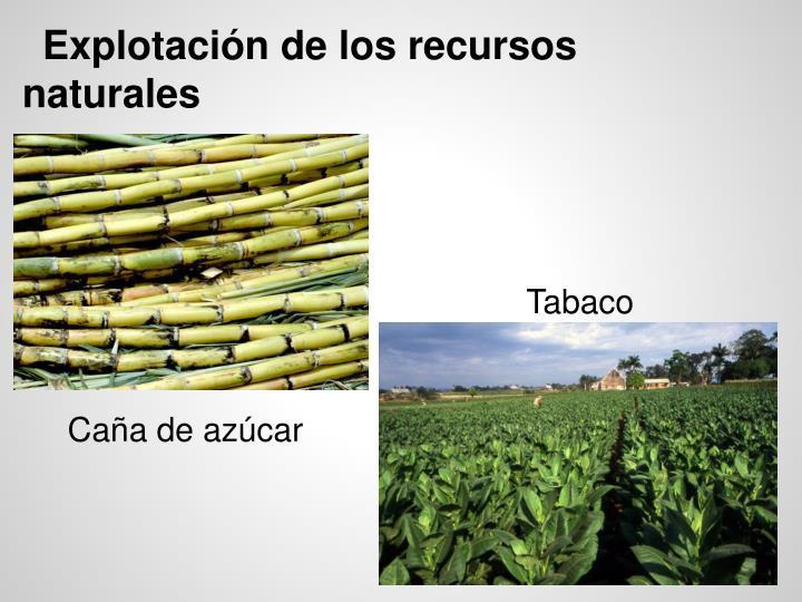 PPT - Cuba PowerPoint Presentation - ID:3937590