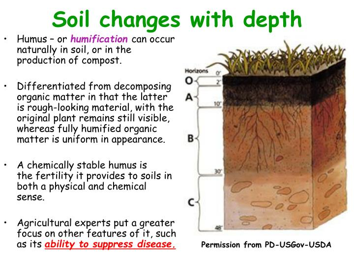 Soil changes with depth