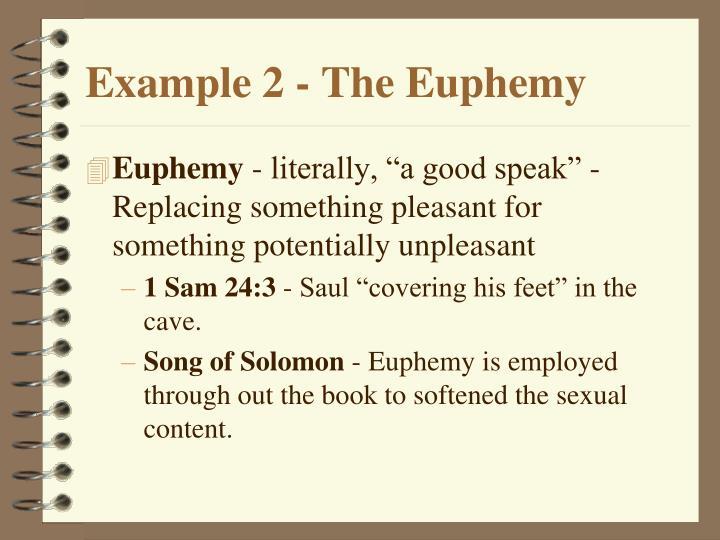 Example 2 - The Euphemy