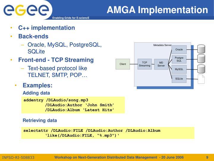 AMGA Implementation