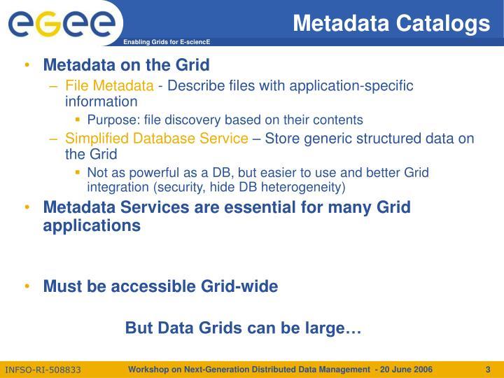 Metadata catalogs