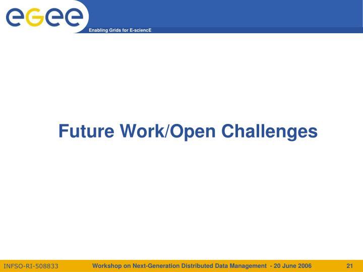 Future Work/Open Challenges
