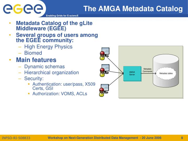 The AMGA Metadata Catalog