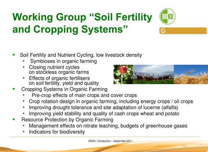 "Working Group ""Soil Fertility and Cropping Systems"""