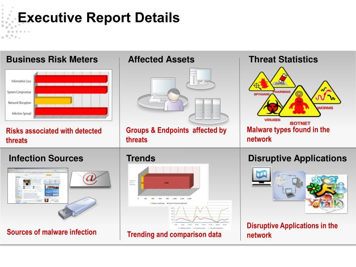 Executive Report Details